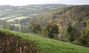 devonmoors-ashburton-dartmoor-foot